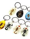 Keychain ambre Scorpion (couleur aléatoire)