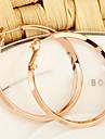 Gold Plated bronze Circle hoop Earrings ER0359