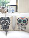 Комплект из 2 стильный дизайн хлопок / белья Декоративные подушки крышки