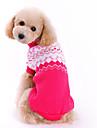 Собаки Свитера Розоватый Одежда для собак Зима Весна/осень Бант Милые Мода