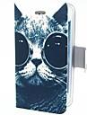 Кот ученый с глаз ПУ кожаный чехол для iPhone 4/4S