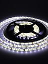 водонепроницаемая 5м 300 * 53528 СМД белый / теплый белый свет прокладка водить светильник (DC12V)
