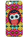 Colorful Glasses Owl Pattern Case for iPhone 5/5S