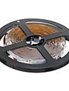 ZDM ™ 5m 24w 300x3528smd 6000K 백색 조명 LED 스트립 램프 (직류 12V)