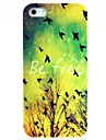 Vintage Bird & Arbre Hard Case pour iPhone 5/5S