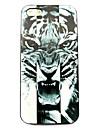 животное тигр шаблон жесткий футляр для iPhone 5 / 5S