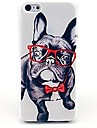 Cool Puppy Pattern Hard Case for iPhone 5/5S