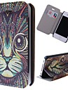 Special Grains Cat Clear Pattern PU Full Body Case with Card Slot for iPhone 4/4S