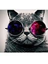 "Cool Cat Design Full-Body Protective Plastic Case for MacBook Pro 13""/15"" (Non-Retina)"