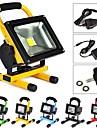 10W LED прожекторы 1 Высокомощный LED 1000 lm Тёплый белый С возможностью зарядки AC 100-240 V