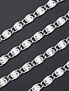 Ожерелье Сталь Ожерелья-цепочки Бижутерия В форме линии Нержавеющая сталь / Титановая сталь Серебряный Подарок