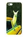 alpaca no caso padrão carro para 5/5s iphone