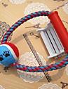 1pcs pet fornecimentos corda de algodão com brinquedos de mastigar brinquedo do cão bola de cor aleatória