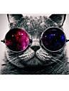 "Case for Macbook Air 11.6""/13.3"" Animal Plastic Material Cat with Cosmos Glasses Design Full Body Case"
