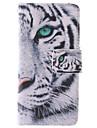 projeto do tigre branco pu couro caso de corpo inteiro com slot para suporte e cartão para iphone 5 / 5s