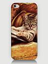 le cas modèle de téléphone diligente de chat couverture arrière cas pour iphone5c