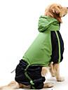 Коты Собаки Дождевик Красный Зеленый Одежда для собак Лето Весна/осень Цветовые блоки Водонепроницаемый Защита от ветра