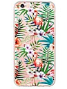 Flamingos Pattern TPU Ultra-thin ranslucent Soft Back Cover for iPhone 6s Plus/6 Plus/ 6s/6/ SE/5s/5