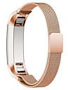 Черный / Роуз / Золотистый / Серебристый Нержавеющая сталь / Металл Миланский ремешок Для Fitbit Смотреть 10mm