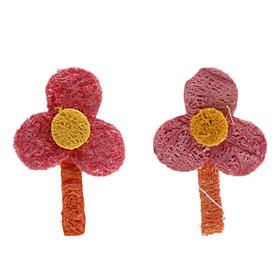 Blume Zahnreinigung Grün Loofah Pet Toys (2-Piece) 445893