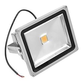 30W 3000K Warm White Light LED Flutlicht AC110/220V 793109