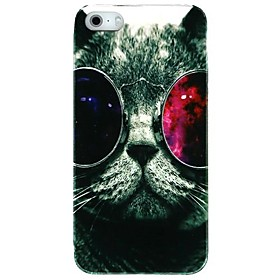 Glasses Cat Plastic Back Case for iPhone 5/5S 1449041