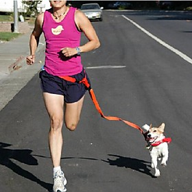 Cat / Dog Leash Adjustable/Retractable / Running / Hands free Solid Multicolor Nylon 2354716