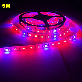 5M MORSEN 5050 Waterproof LED Flexible Strip Tape Light 4 Red 1 Blue Greenhouse Hydroponic Plant Growing Lamp (12V)