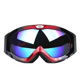 Professional Double Layer Anti Fog Lens Ski Glasses 5103005