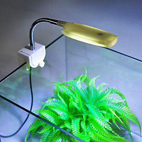 Aquarium LED Lighting White Energy Saving LED Lamp 220V 5531766