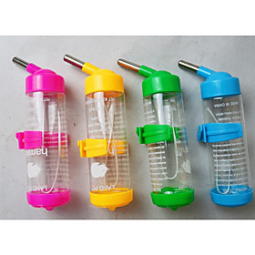 Bowls  Water Bottles Silicone 6165101