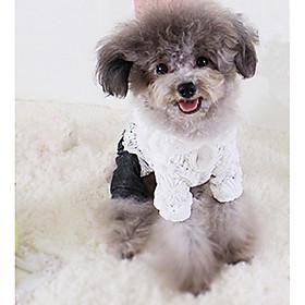 Hund Kjoler Hundetøj Afslappet/Hverdag Prinsesse Hvid 6130878