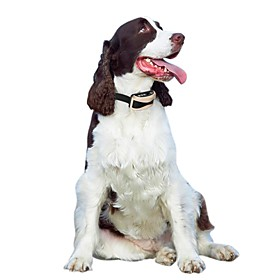 Dog Bark Collar Electronic Waterproof Anti Bark Rechargeable Electronic/Electric 6212822