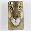 Lion Face Pattern Hard Glue Edge Grinding Case for iPhone 4/4S