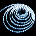1M 14.4W 60x5050SMD 720-780LM  6000-6500K  White Flexible LED Light Strips Waterproof IP66 / Plug(220V)