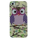 Waved Stripe Printed Owl Pattern TPU Material Soft Back Cover Case for iPhone 5/5S