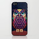Pineapple Owl Pattern Hard Case for iPhone 5/5S