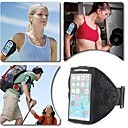 Mesh Nylon Quick Dry Sporty Armband for iPhone 6 (Assorted Colors)