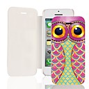 Stay of the Owl PU Leather Full Body Case for iPhone 5/5S