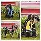 Pet Clothes Of New Fund Of 2014 Autumn Winters Pet Baseball Uniform Qiu Dong Outfit Cotton 4611