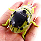 Solar Powered Beetle Novelty Vibrating Toy Teaching Aid for Children 4611