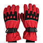 Motorcycle Gloves Winter Windproof Waterproof Warm Cotton Gloves 4611