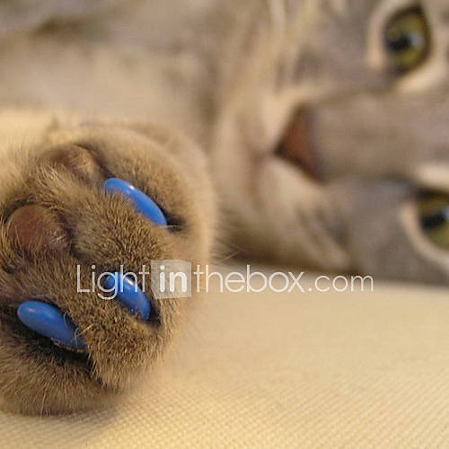 Mini in the box ES|Gato de Aseo Atención de Salud Tapa para Uñas Mascotas Útiles de Aseo Rojo Verde Azul Rosa Verde Cazador