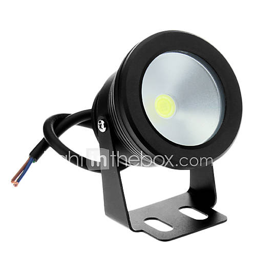 Flood Lights 10 W LM Cool White DC 12 V