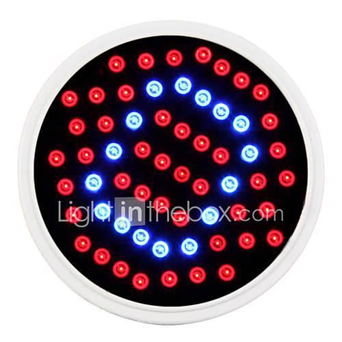 2.6W lm Growing Light Bulbs 60 leds SMD 2835 Red Blue AC 85-265V