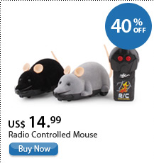 Radio Controlled Mouse
