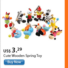 Cute Wooden Spring Toy