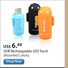 USB Rechargeable LED Torch (Assorted Colors)
