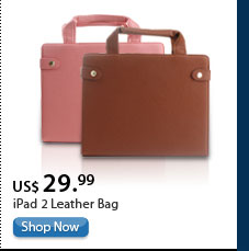 iPad 2 Leather Bag