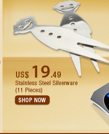 Stainless Steel Silverware (11 Pieces)